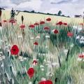 Poppy Hedgrow